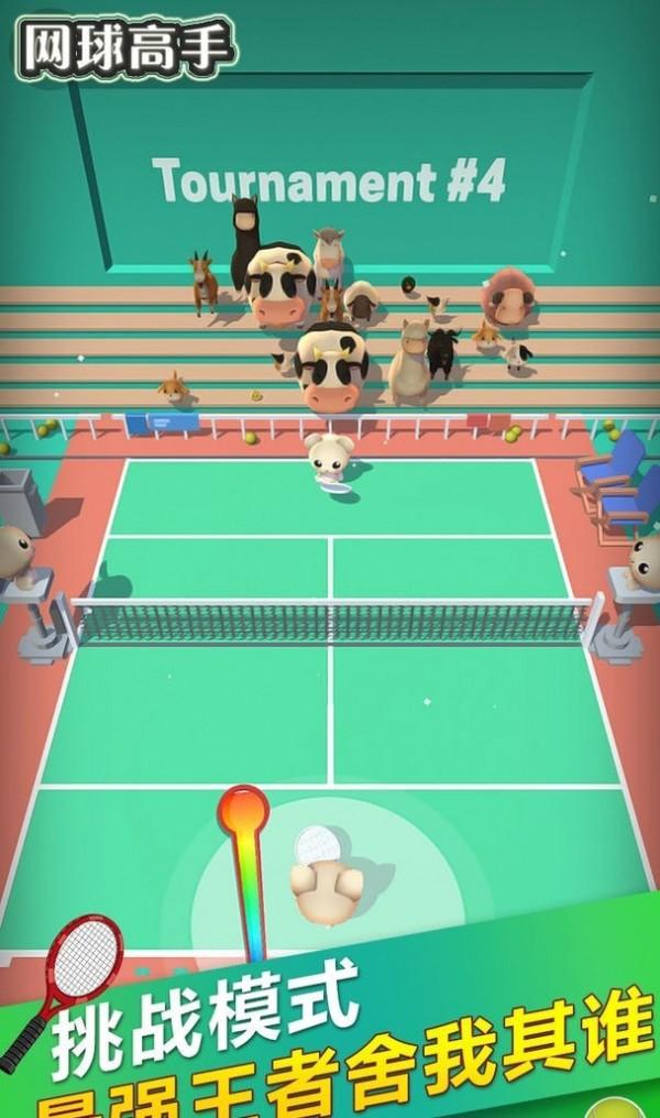 网球高手单机版图3