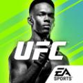 UFC终极格斗冠军2单机版