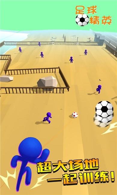 足球精英单机版图1