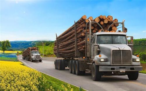 重型货车模拟器单机版图1