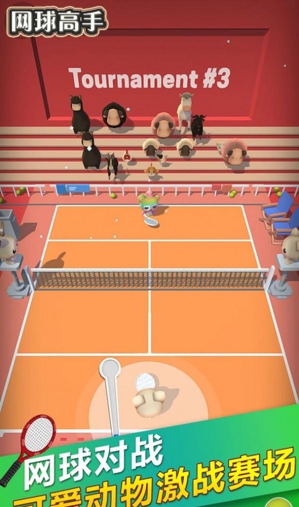 网球高手单机版图2