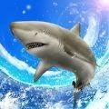 鲨鱼垂钓大师单机版