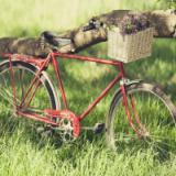 3D模拟自行车越野单机版