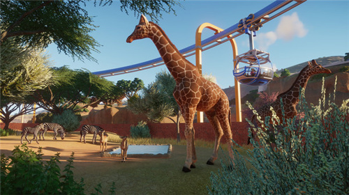 动物园之星中文版下载图3