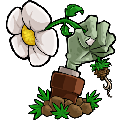 植物大战僵尸95版下载