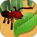 蚂蚁进化3d蜜蜂boss
