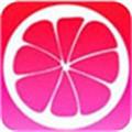 蜜柚app下载汅api免费最新版