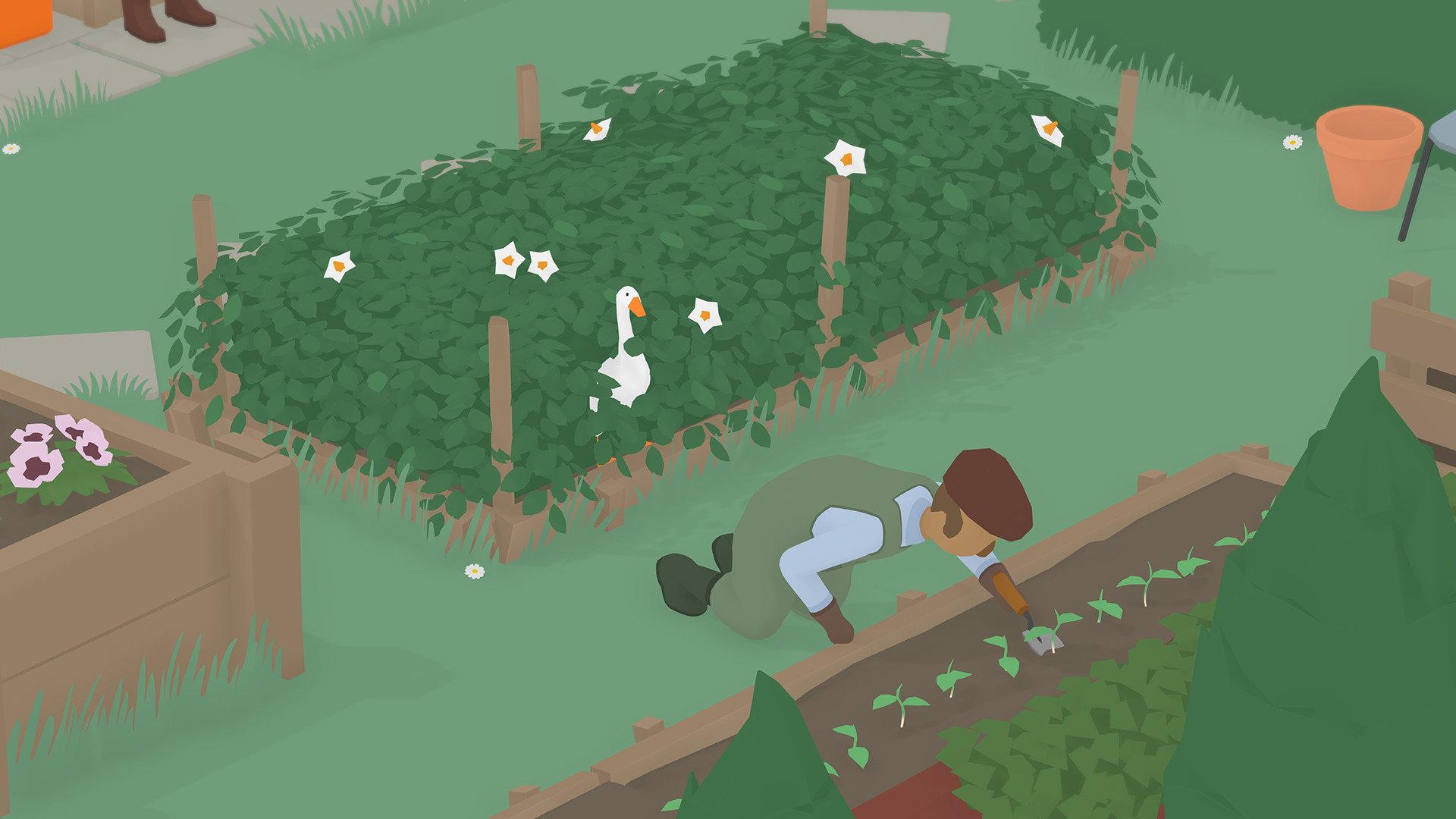 无题大鹅模拟双人版截图