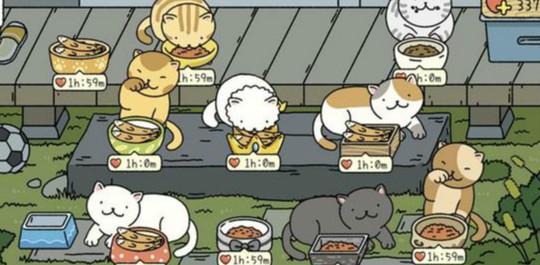 超可爱的猫咪类的游戏合集