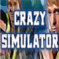 疯狂模拟器