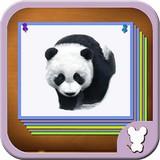 动物图鉴3D