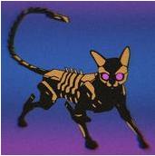 賽博朋克貓