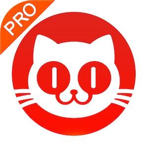 猫眼专业版实时票房