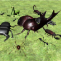 臭虫战斗模拟器3D