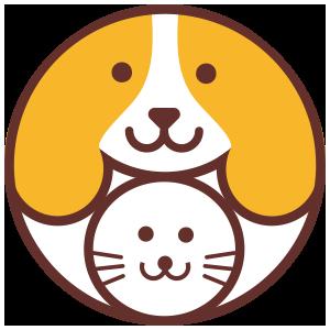 毛宠团appv1.0.2