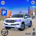 普拉多停车驾驶 v1.0.3