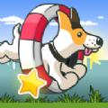 爱运动的小狗