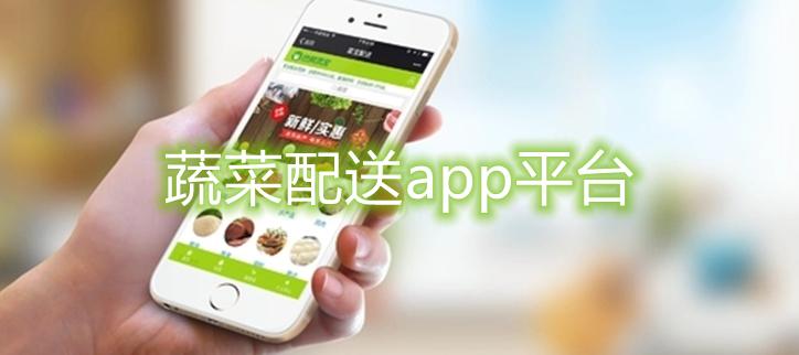 蔬菜配送app平台