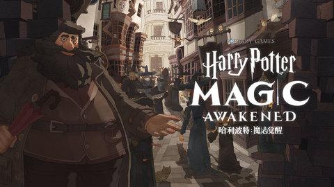 哈利波特:魔法觉醒官方版图1