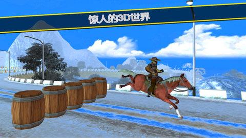 骑马模拟器3D图2