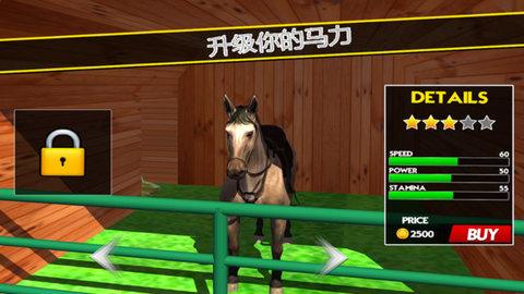 骑马模拟器3D图3