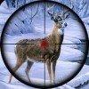 动物终极猎人