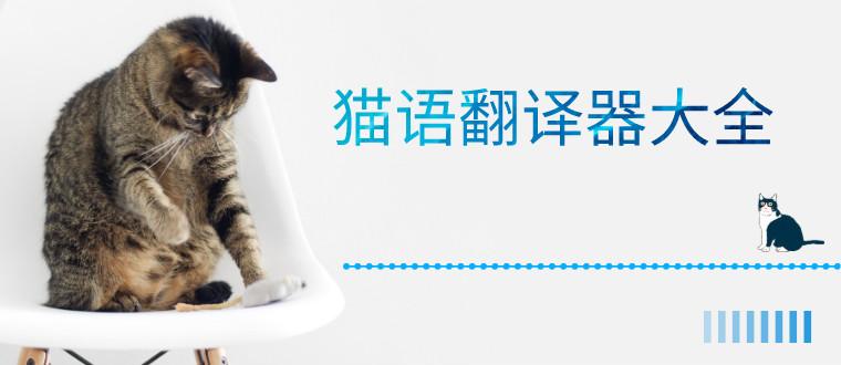 猫语翻译器大全
