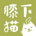 膝下猫app