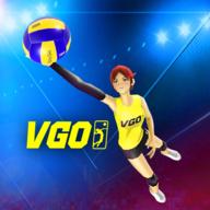 3D排球运动v1.0.59